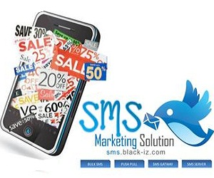 Corporate Bulk SMS Marketing Solution